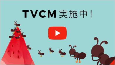 TVCM実施中!